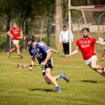 Junior B Hurlers Win County League